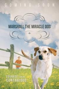 Marshall_MoviePoster_ComingSoon
