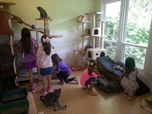 Girl Scout Troop #726 at Granite City APA / Submitted photo