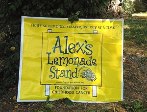 Alex's Lemonade Stand sign at 704 Caseyville Road, Collinsville / Photo by Roger Starkey